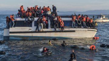 refugiados-cusme