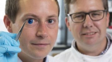 Foto: Agencia - Profesores muestran la versión teñida de las córneas