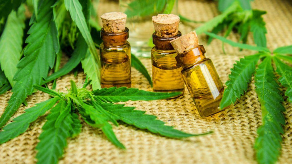 Reino Unido tentado a legalizar la cannabis medicinal