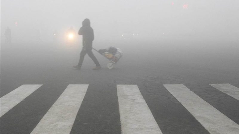 La OMS calcula que la contaminación causa directamente unos siete millones de muertes anuales en todo el mundo