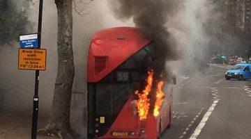 Imagen del incendio. (Fotos: Bernd Borchert)